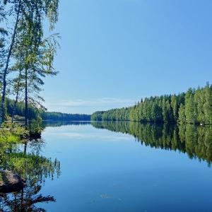 Oulujoki Halinsaaren kohdalla