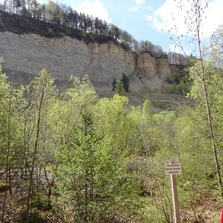 Abbruchkante Bergrutsch von 1983 mit Hirschkopf