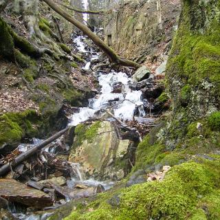 Wasserfall im Billtal