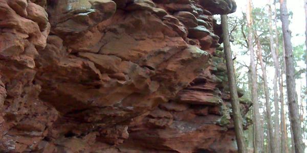 Pfad auf dem Dimberg, immer entlang an bizarren Buntsandsteinformationen