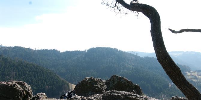 oben auf dem Klettersteig