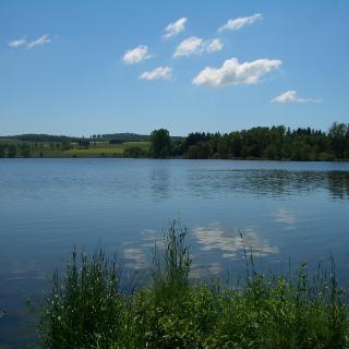 Nieder-Mooser Teich