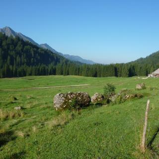 Untere Eck Alpe mit Nagelfluhkette