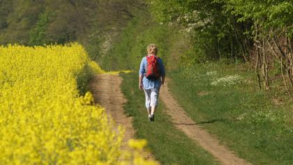 Wohlfühlwandern zwischen Wald und Wiesen