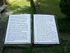 Informationstafel über die Ruine Anhausen   - © Quelle: Antje Kunz