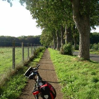 Weg bei Schloss Dyck (Juni 2011)