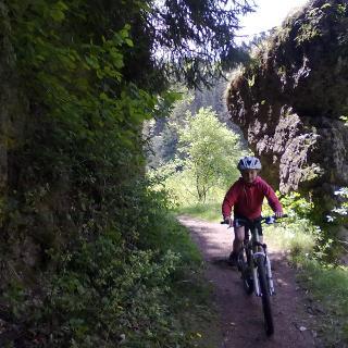 Trail im Aufseßtal