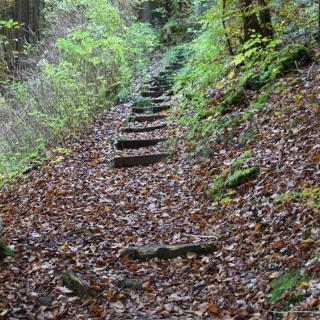 Stufen im Leidingshofer Tal