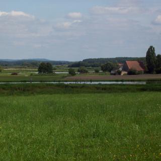 Im Naturschutzgebiet Biengarten