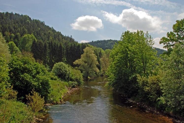 Schwarzwälder bote partnervermittlung