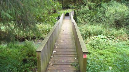 Holzbrücke bei Rabescheid