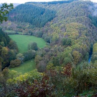 Hoch über dem Liesertal zwischen Manderscheid und Wittlich