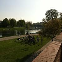 Donauswiese in Ulm