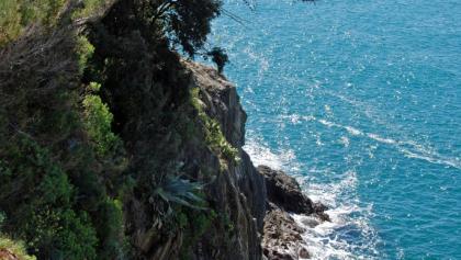 An der ligurischen Steilküste bei Manarola