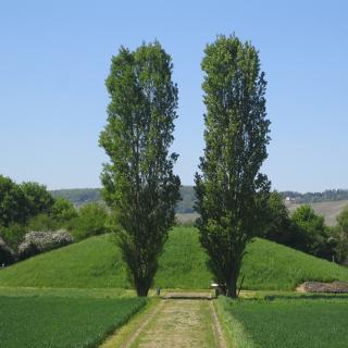 Tumulus in Nennig