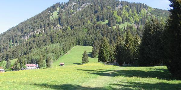 Grünten und Gasthof Alpenblick