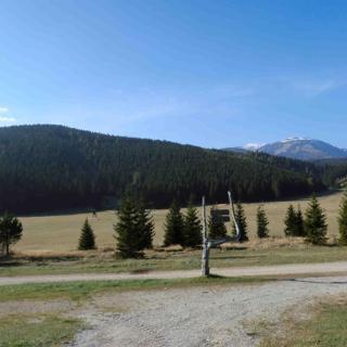 Bodenwiese mit Schneeberg