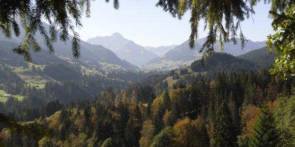 Panorama Kleinwalsertal