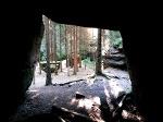 Foto Blick aus dem Kuhstall in den Nikolsdorfer Wänden