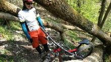Schreckenfels - flowiger Trail Grabenstetten und Tobeltal bergauf