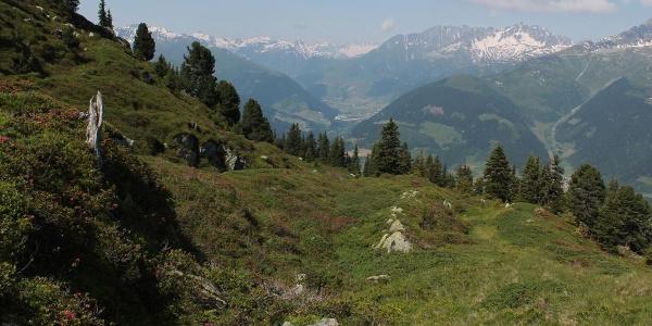 Vor der Alp Soliva Blick ins Val Tujetsch