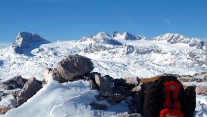 Speikberg 2125 m mit Dachsteinblick
