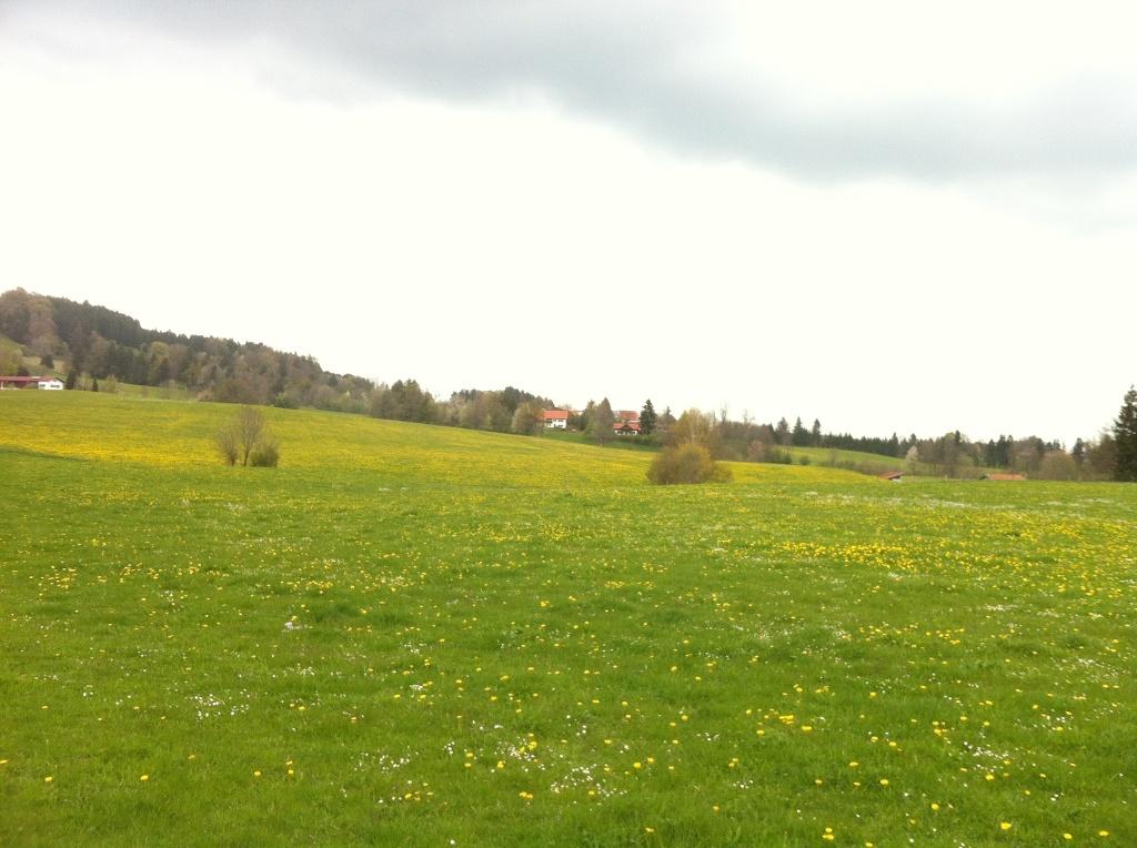 Weitblick auf das Weiler Leithen (Antonie Schmid)