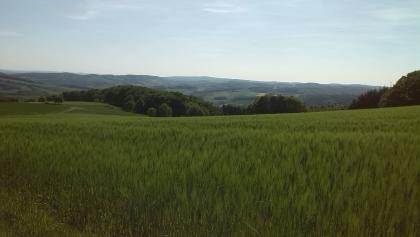 Blick von der Neunkirchener Gemarkung