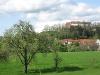 Blick auf die Tannenburg  - @ Autor: Silke Rüdinger  - © Quelle: Hohenlohe + Schwäbisch Hall Tourismus e.V.