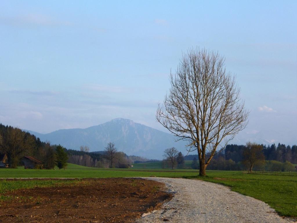 Begleitet von einem grandiosen Bergblick geht es aus dem Ort hinaus. (Monika Heindl)