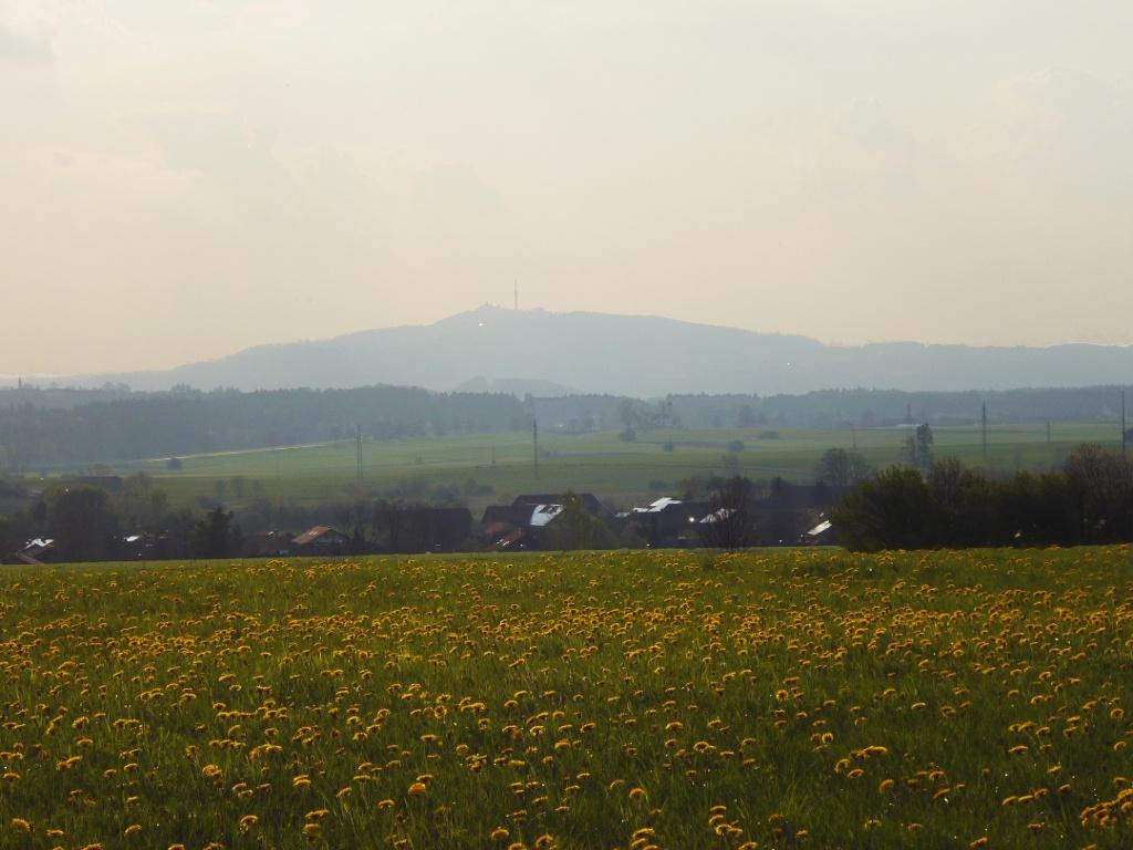 Schöner Blick vom Schellenberg über Eberfing hinweg zum Hohen Peißenberg mit dem Fernsehturm. (Monika Heindl)
