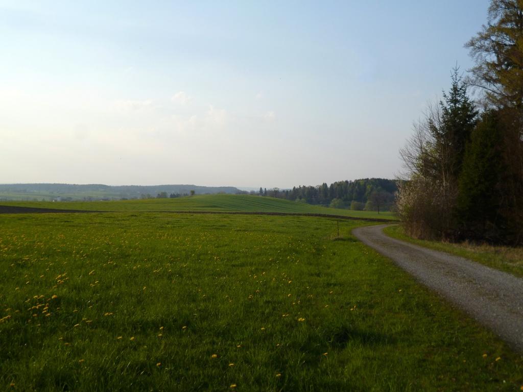 Blick über die freien Wiesen und Felder auf der Nordwestseite des Schellenbergs - bei genauem Hinschauen erkennt man am linken Bildrand die Eberfinger Kirche. (Monika Heindl)