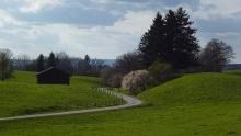 Panoramaweg Schellenberg