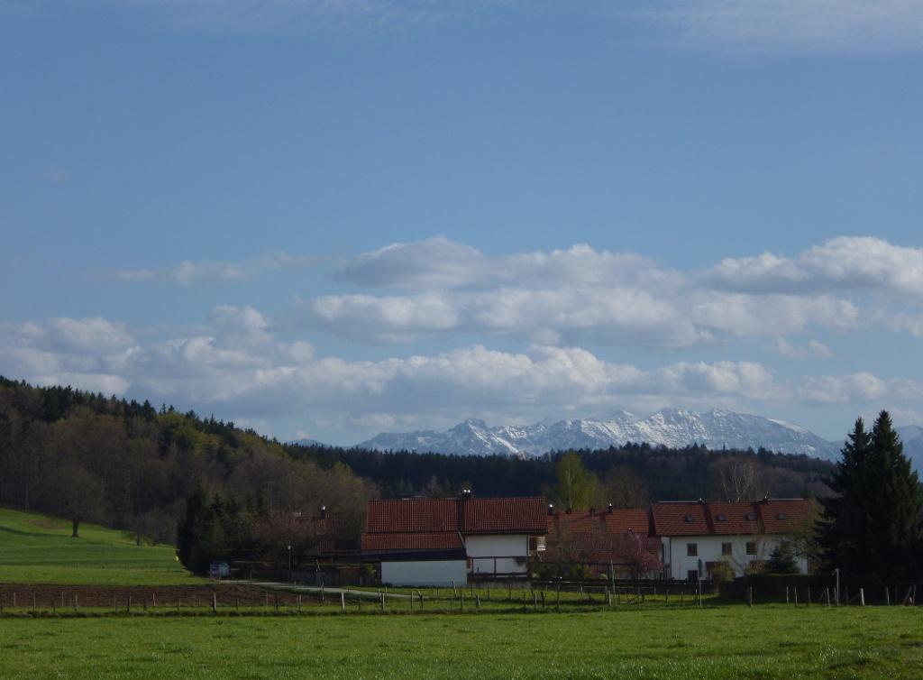 Auf dem Rückweg entlang des östlichen Ortsrands von Eberfing lohnt sich ein Blick zurück - die Häuser von Eberfing mit den dahinter aufragenden Gipfeln der Bayerischen Alpen. (Monika Heindl)