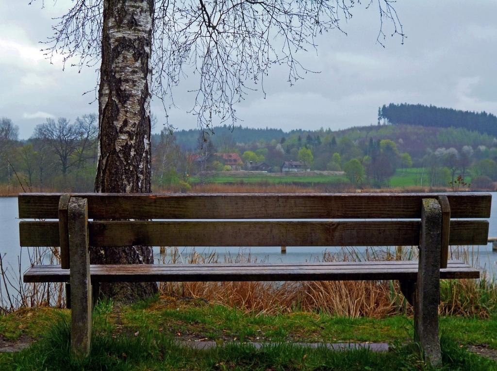 Mehrere Bänke am Ufer des Dietlhofer Sees bieten Platz zum Erholen - hier mit Blick zum Weiler Dietlhofen. (Monika Heindl)