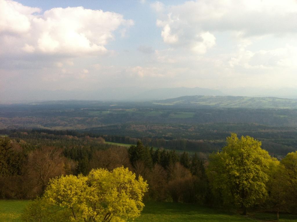 Vom Gipfel hat man einen traumhaften Weitblick auf das Alpenmassiv. (Antonie Schmid)