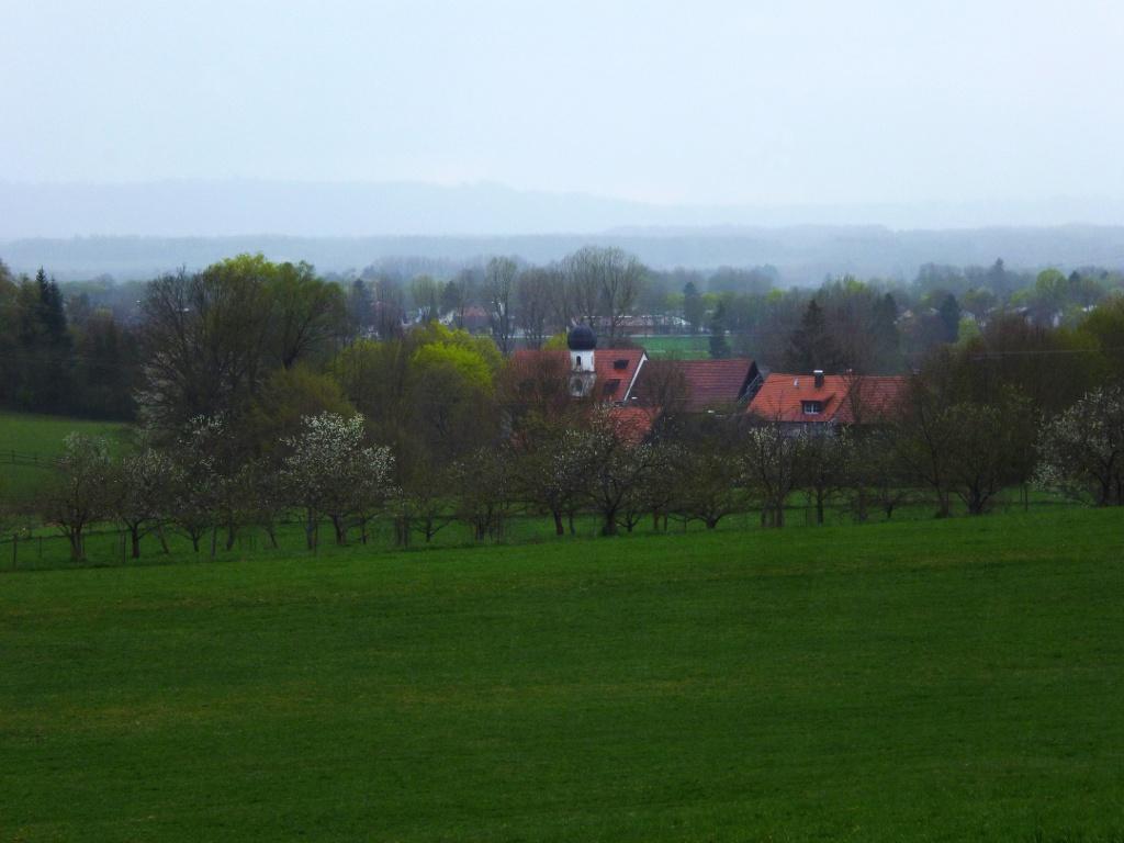 Schöner Blick vom Weg auf das - hinter Bäumen versteckte - Gut Dietlhofen mit dem weißen Türmchen der Hofkirche. (Monika Heindl)