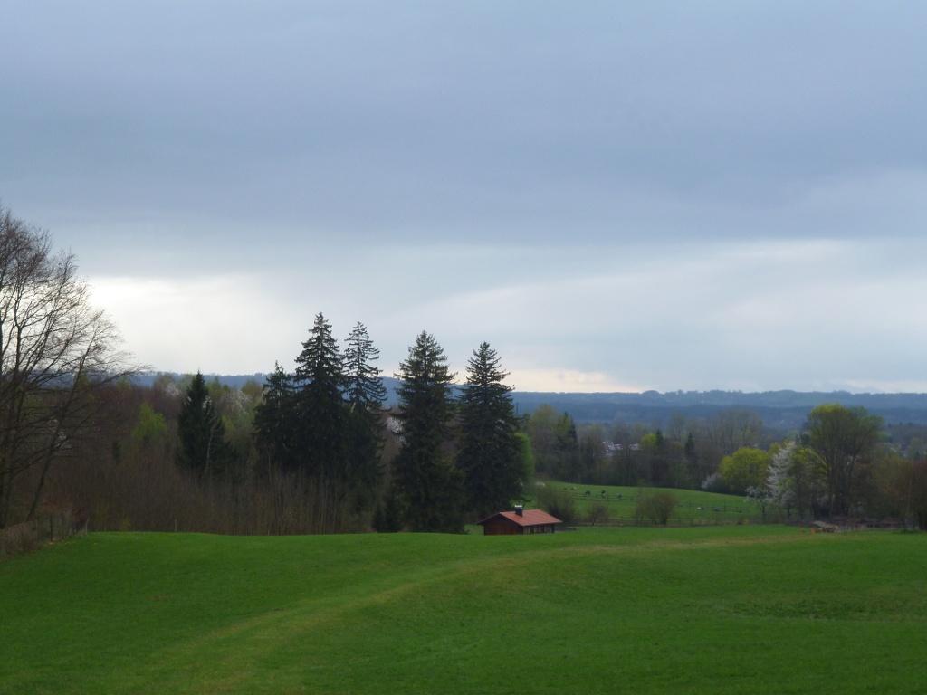 Blick über die sanfte Hügellandschaft mit saftig grünen Wiesen und Weiden kurz bevor der Weg in den Wald führt. (Monika Heindl)