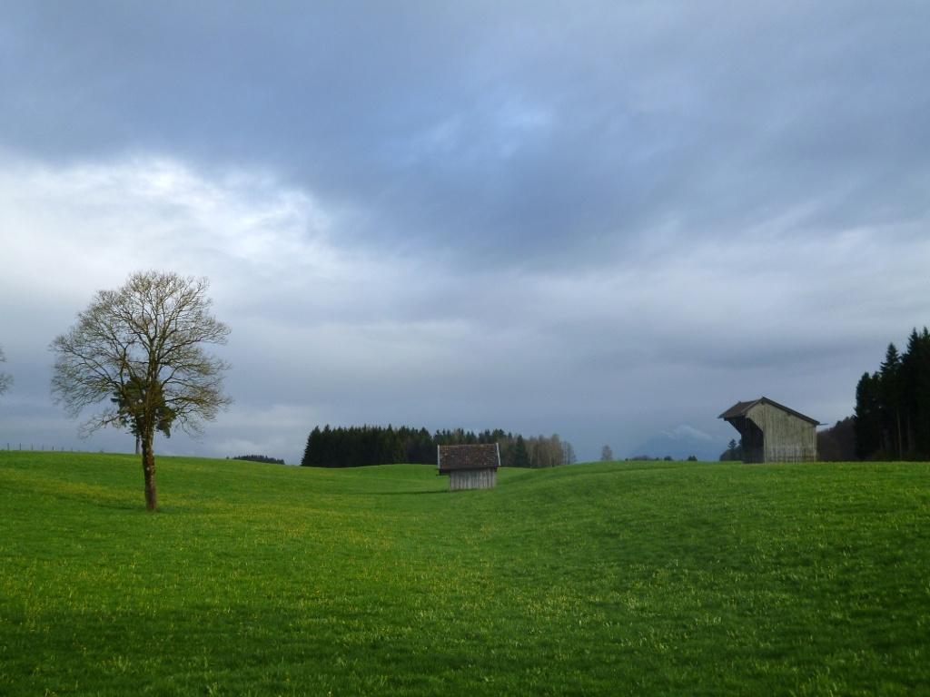 Wunderschöner Blick über die wellige Hardtlandschaft hinweg auf die - hier nur schwach sichtbaren - Bayerischen Alpen. (Monika Heindl)