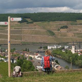 Panorama am Rhein-Nahe-Blick