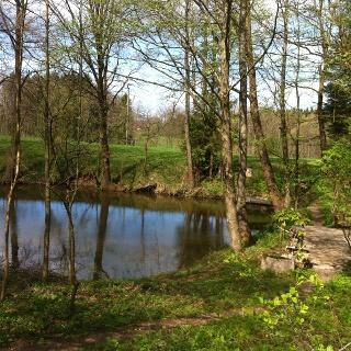 Malerisch gelegener See bei Nantesbuch.