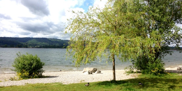 Uferpromenade Radolfzell