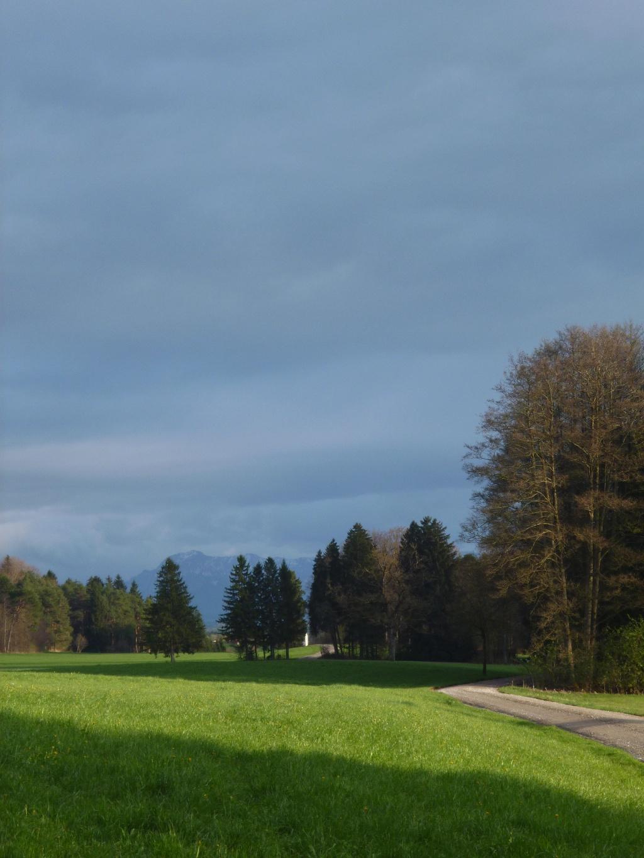 Idyllisch geht es wenig später am Waldrand entlang nach Süden direkt auf die Berge zu. (Monika Heindl)