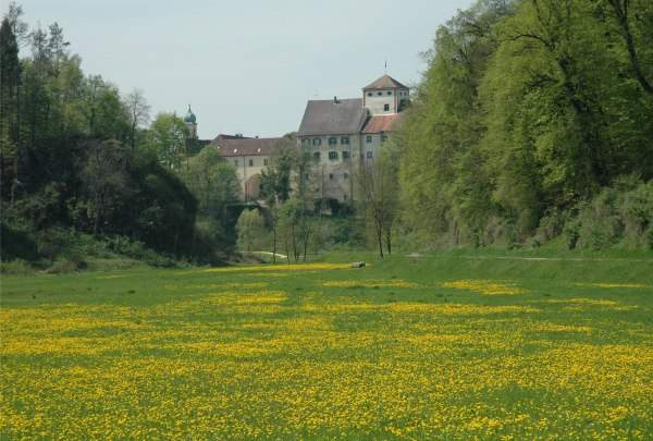 Schloss Langenstein mit Fasnachtsmuseum