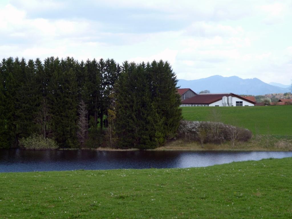 Schöner Blick über den Hachtsee zu den Höfen des Weilers Reinthal - im Hintergrund die Alpen. (Monika Heindl)