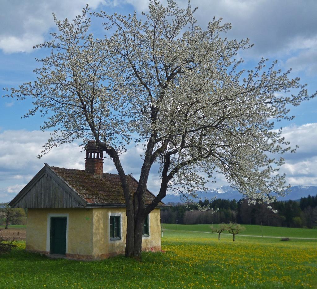 Die malerisch gelegene Kapelle im Weiler Reinthal. (Monika Heindl)