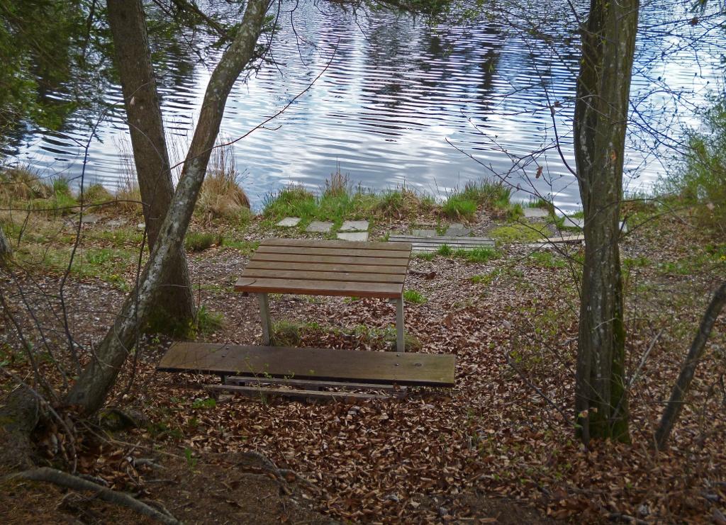Am Nordufer des idyllisch gelegenen Pollinger Weihers befindet sich ein kleiner Rastplatz. (Monika Heindl)
