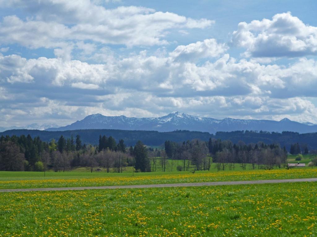 Panoramareich führt das schmale Sträßchen nach Reinthal. (Monika Heindl)