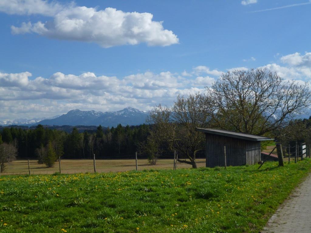 Grandioser Blick auf die Alpenkette vom südlichen Ortsrand von Egenried. (Monika Heindl)