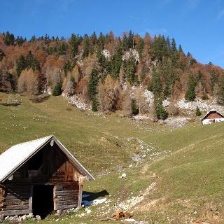 Sommeraueralm 1186 m